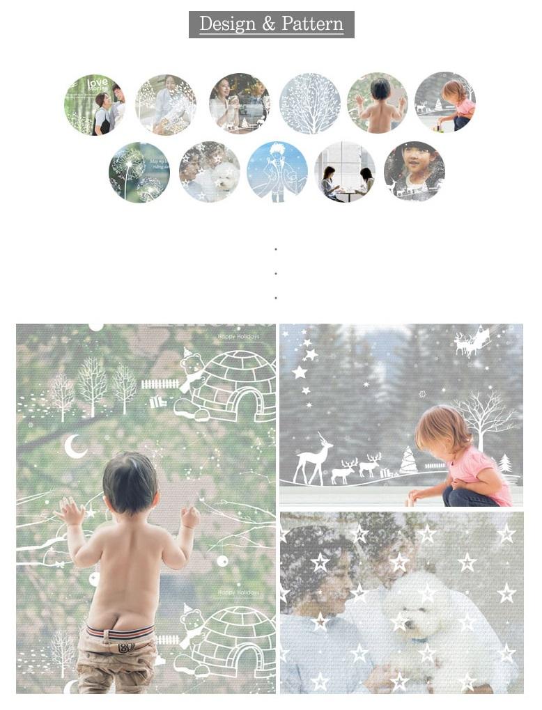 Dandelionholeinsulationdesc.jpg
