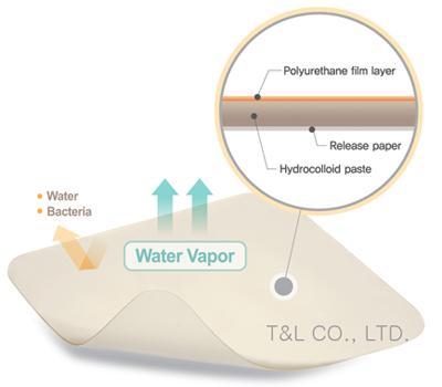 RenoCare Hydrocolloid