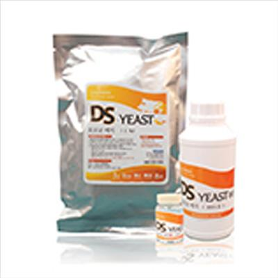 Self-cultivation - DS -YEAST