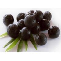 Acai berry Extract, Acai berry Extract Powder  Made in Korea