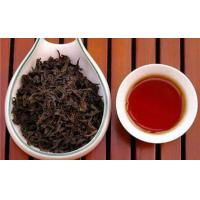 Black Tea Extract  Made in Korea