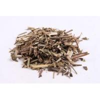 Catnip Extract, Catnip P.E. Herba Schizonepetae Extract, Schizenepeta Extract  Made in Korea