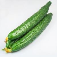 Cucumber Extract  Made in Korea