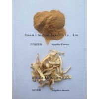 Dong Quai Extract, Angelicae Extract, Dong Quai Root Powder,Dong Quai Root P.E.,Angelica sinensis Flavone,Organic Dong Quai Extract Powder  Made in Korea