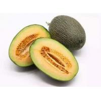 Hami melon extract , Melon Extract, Cantaloupe Extract  Made in Korea