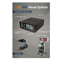 HD ENT Endoscopic Device  Made in Korea