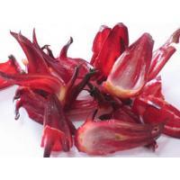 Hibiscus Extract, Roselle Extract, Hibiscus Sabdariffa Extract  Made in Korea