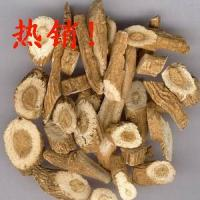 Isatis Root Extract, Radix isatidis P.E.  Made in Korea