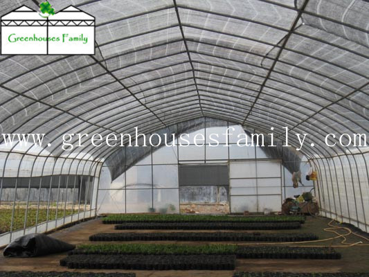 Plastic Greenhouses  Made in Korea
