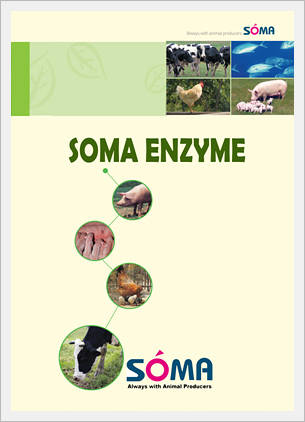 Soma Enzymes