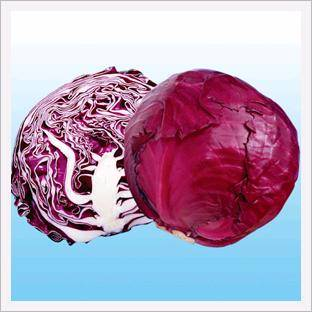 Cabbage, Red Ball