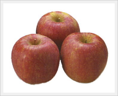 Apple(Fruit)