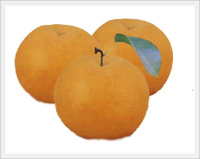 Pear(Fruit)