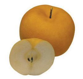 Pear  Made in Korea