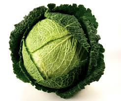 Chinese fresh green round cabbage