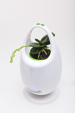 Decorate with mini ion air purifier & LED ...