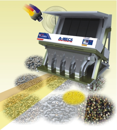 Color Sorter Pro (Royal)  Made in Korea