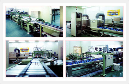Peach Washing & Packaging Line