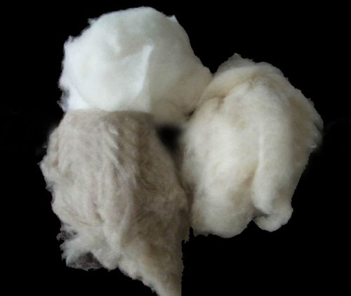dehaired cashmere fibers  Made in Korea