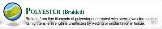 Polyester (Braided)