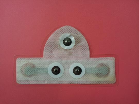 Holter Electrode