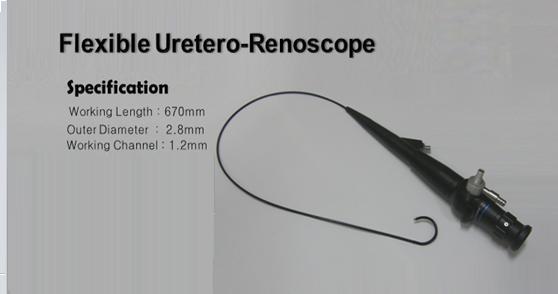 Flexible UreteroRenoScope