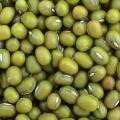 Green Mung Bean  Made in Korea