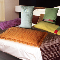 High level anion buckwheat pillow  Made in Korea