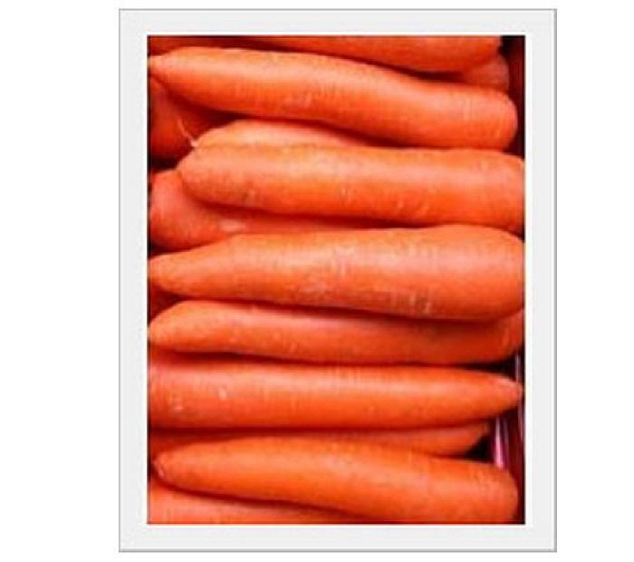 Fresh Carrot  Made in Korea