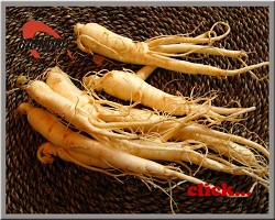 Herbal extract, Ginseng Extract, NLT 10%, 20%, 80%  Made in Korea