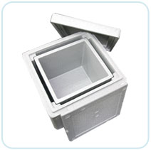 TAPSPOR BOX  Made in Korea